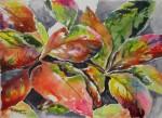 Obras de arte:  : Costa_Rica : San_Jose : Moravia : HOJAS CON COLOR