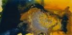 Obras de arte:  : España : Catalunya_Barcelona : Barcelona : Contraste en azul VII