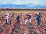 Obras de arte: America : México : Baja_California_Sur : lapaz : Cosecha