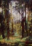 Obras de arte: America : Colombia : Santander_colombia :  : Bosque el Gallineral