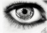 Obras de arte: America : Venezuela : Aragua : Maracay : occhi