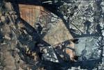 <a href='http//en.artistasdelatierra.com/obra/135882--.html'> &raquo; Oscuraldo de las profundidades<br />+ más información</a>