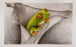 Obras de arte: America : Venezuela : Aragua : Maracay : Frog