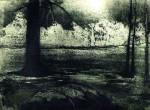 Obras de arte: America : Chile : Valparaiso : viña_del_mar : Silencio en el bosque II
