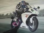 Obras de arte:  : Rep_Dominicana : Azua :  : la brisa rosa mi moto