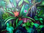 Obras de arte: America : Perú : San_Martin : tarapoto-_ciudad : Plantas, ranas y sensaciones