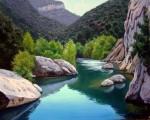 Obras de arte: Europa : España : Catalunya_Girona : olot : reflejos