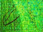 Obras de arte: America : Cuba : La_Habana : miramar._playa : ElBouyur