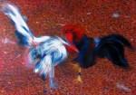 Obras de arte: America : Cuba : La_Habana : miramar._playa : Fantasma