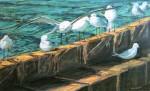 Obras de arte: Europa : España : Andalucía_Almería : Almeria : Gaviotas en el espigón