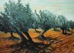 Obras de arte: Europa : España : Andalucía_Almería : Almeria : Olivar