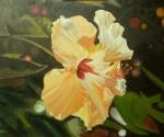 Obras de arte: Europa : España : Andalucía_Granada : almunecar : flor