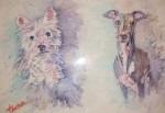 Obras de arte: Europa : España : Comunidad_Valenciana_Alicante : Novelda : Westy and Whippet