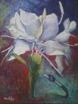 Obras de arte:  : Cuba : Camaguey : Camaguey_ciudad : Unidos por los cinco
