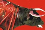 Obras de arte: Europa : España : Madrid : Madrid_ciudad : Toro M fin: Arte, fiesta u orgía?