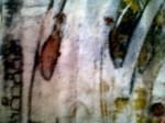 <a href='https://www.artistasdelatierra.com/obra/143030-ENTELEQUIAS.html'>ENTELEQUIAS &raquo; karen oz<br />+ más información</a>