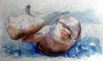Obras de arte: America : Ecuador : Guayas : GUAYAQUIL : delfines de galápagos