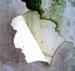 <a href='https://www.artistasdelatierra.com/obra/147221-frente-e-verso.html'>frente e verso &raquo; Didi Dias<br />+ más información</a>