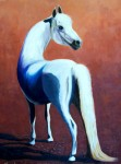 Obras de arte: America : Chile : Coquimbo : La_Serena : Caballo en plaza de Toros