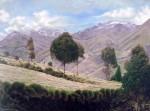 Obras de arte:  : Ecuador : Manabi :  : Árboles en Tigua