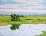 Obras de arte:  : Ecuador : Manabi :  : Paisaje Cerca a Tosagua