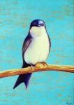 Obras de arte:  : Ecuador : Manabi :  : Golondrina