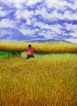 Obras de arte:  : Ecuador : Manabi :  : La Cosecha