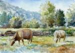 Obras de arte: Europa : España : Catalunya_Girona : olot : Pastoral