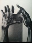 Obras de arte:  : Colombia : Tolima : Ibague : Aferrate