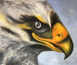 Obras de arte:  : Chile : Region_Metropolitana-Santiago : Peñalolen : Eagle