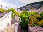Obras de arte: Europa : España : Andalucía_Almería : Almeria : Vista parcial de Capileira - Granada