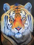Obras de arte:  : Colombia : Antioquia : Medellin : tigre
