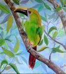 Obras de arte:  : Colombia : Antioquia : Medellin : tucaneta