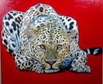 Obras de arte:  : Colombia : Antioquia : Medellin : Jaguar