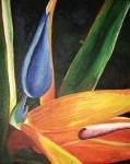 Obras de arte:  : Panamá : Panama-region : albrook : Ave del paraíso