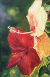 Obras de arte:  : Panamá : Panama-region : albrook : Cayenas con avispa