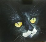 Obras de arte:  : Panamá : Panama-region : albrook : Gato negro