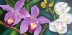 Obras de arte:  : Panamá : Panama-region : albrook : Orquídeas y flores del Espíritu Santo