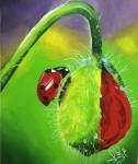 Obras de arte:  : Panamá : Panama-region : albrook : Flor con mariquita