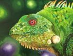 Obras de arte:  : Panamá : Panama-region : albrook : Iguana