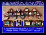 Obras de arte:  : Panamá : Chiriqui : David : EL ADIESTRAMIENTO DEL BÚFALO - Versión de PUMING