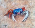 Obras de arte:  : Panamá : Panama-region : albrook : Cangrejo