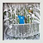 Obras de arte: Europa : España : Madrid : Madrid_ciudad : Aventura en la selva