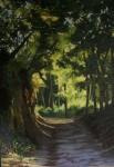 Obras de arte: Europa : España : Castilla_y_León_Burgos : burgos : El bosque