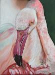 Obras de arte:  : Panamá : Panama-region : albrook : Flamingo