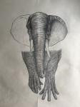 <a href='https://www.artistasdelatierra.com/obra/158238-Elephand.html'>Elephand » Alejo Malia<br />+ más información</a>