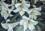 Flores  2002 al 05