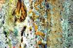 Obras de arte: Europa : España : Andalucía_Sevilla : paso_2 : Vulcana (5)