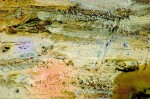 Obras de arte: Europa : España : Andalucía_Sevilla : paso_2 : Terra sub uno (2)