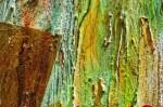 Obras de arte: Europa : España : Andalucía_Sevilla : paso_2 : Terra sub uno (7)